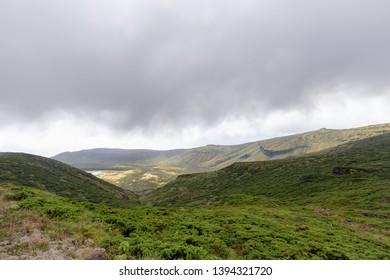 Landscape in the Reserva Florestal Natural do Morro Alto e Pico da Se National Park on Flores Island.