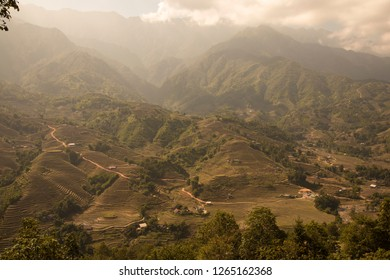 Landscape of rice paddies in winter in Sa Pa Vietnam surroundings.