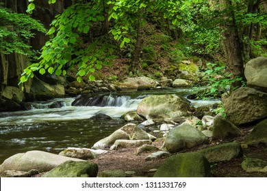 Landscape with river Bode in the Harz area, Germany.