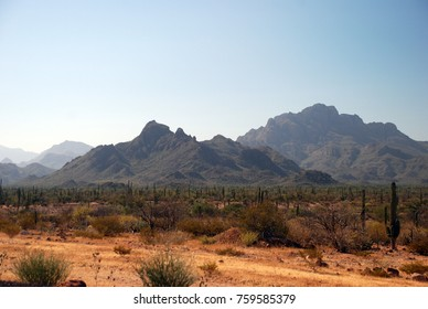 Landscape with road in Baja California