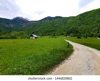 landscape with road in Slovenia