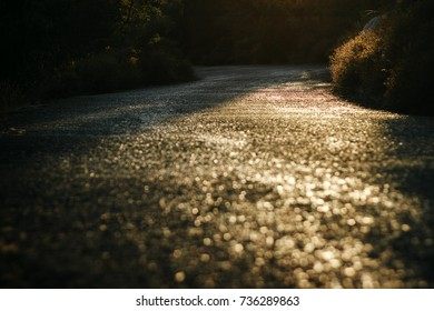 Landscape of the road at sunset