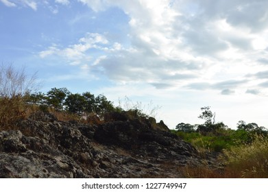 landscape of rock and grass flower on Khao Lon mountain in Thailand