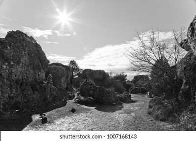 Landscape of rocks and trees