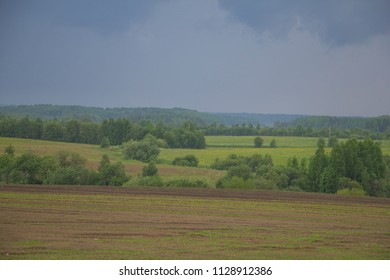 Landscape in Russia. Green fields and forest edge