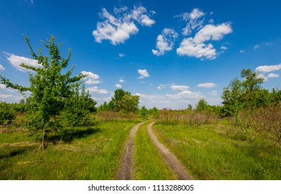 Landscape with rut road in green steppe under blur sky with clouds