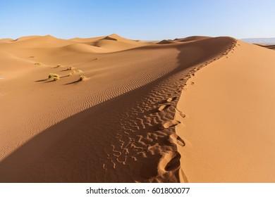 Landscape of Sahara desert in Morocco
