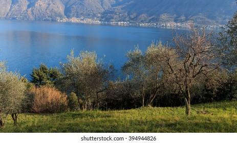 landscape from Sala Comacina - Lake Como