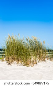Landscape of sand dune and grass by the sea, blue sky, Leba, Baltic Sea, Poland, nature backgrounds.