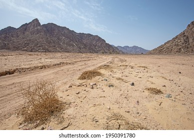 Landscape scenic view of desolate barren eastern desert in Egypt with trail and mountains