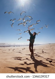 Landscape with sea, teenager and flying seagulls. Texas Coast, Gulf of Mexico, USA