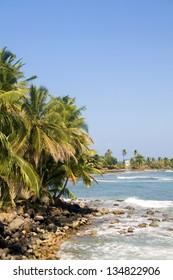 landscape seascape palm coconut trees Caribbean Sea Content Point Big Corn Island Nicaragua Central America