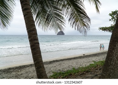 Landscape seascape view of Caribbean sea & the famous Diamond rock in the Diamant beach, sea & waves, palm tree trunk, under a cloudy stormy bad weather sky, Martinique, dom tom, antilles, West Indies