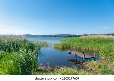 Landscape at the Selliner lake near Baabe on the island of Ruegen at the Baltic Sea