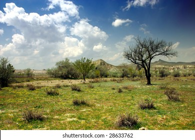 landscape from a semi arid climate