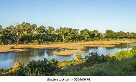 landscape of Shingwedzi riverbank in Kruger National Park, rainy season