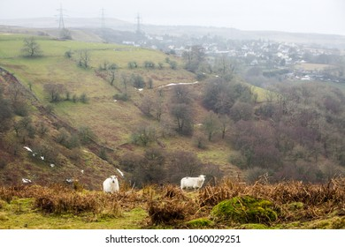 A landscape shot of the classic scenery of Wales.