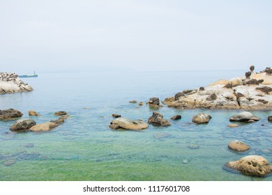 A landscape shot of the cliffs at Yehliu Geopark in Taiwan, Special rocks in Yehliu Geopark at New Taipei City