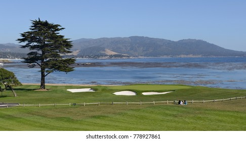 A landscape showing a sea shore, a cypress tree, a golf course, a wooden fence and children stting by and enjoying.