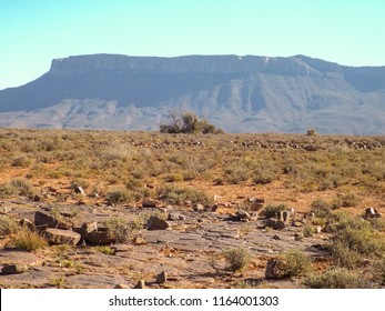 Landscape showing stones, sand and scrubby bushes in the semi-desert Karoo National Park, South Africa