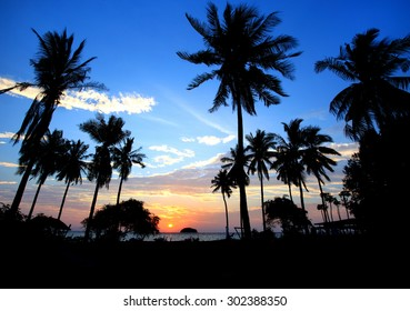 Landscape Silhouetted of coconut tree during sunset, Thailand