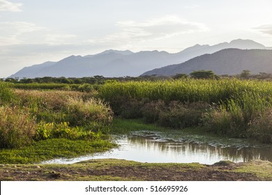 Landscape with small pond in foreground. Omo Valley. Ethiopia.