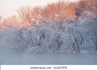 Landscape of snow flocked trees along the Kalamazoo River, Michigan, USA