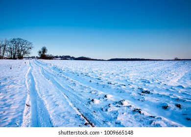 LAndscape of snow in winter, with a blue sky
