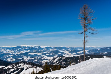 Landscape of snowy mountains in winter with lonely tree in foreground.Koralpe,Austria.