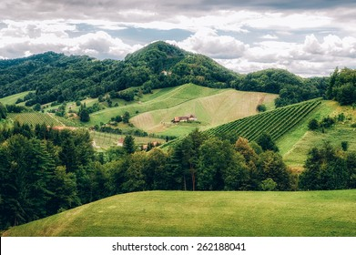 Landscape in Southern Styria with some Vineyards
