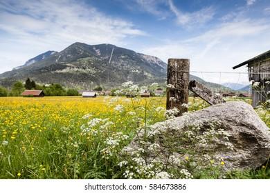 Landscape at Spring near Garmisch Partenkirchen in Bavaria
