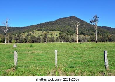 Landscape of Springbrook National Park in Queensland Australia.