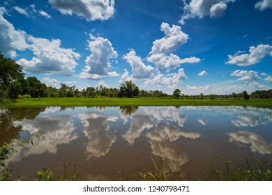 Landscape with standing water and cumulus clouds