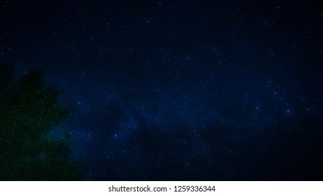 landscape and star  concept from beautiful movement of star and milky way with blue background and tree foreground on autumn season
