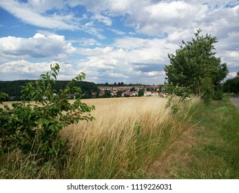 Landscape in the summer time