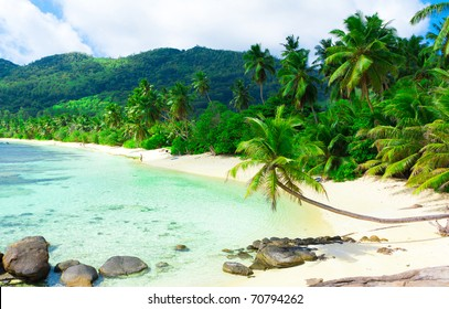 Landscape Summertime Shore