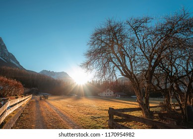 Landscape with the sun and its rays shining and warming the Austrian Alps, the leafless trees, on a sunny day of early winter, in Ehrwald, Austria.