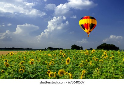 Landscape with sunflowers and a balloon at sunset.