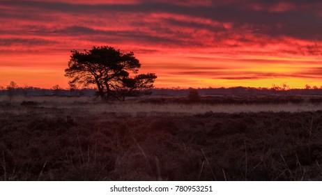 Landscape sunrise red