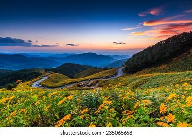 Nature Wallpaper Images Stock Photos Vectors Shutterstock