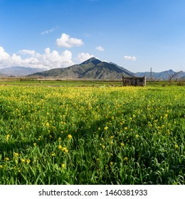 Landscape of Swat, a valley rich in  vast fields and mountaneous range in North west of Pakistan.