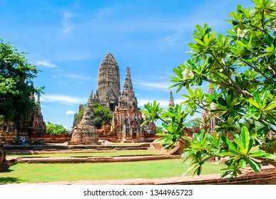 Landscape temple in Ayutthaya Thailand with Lilawadee flower tree ,green field and pagoda make with brick,blue clear sky and white clouds. The old one temple in historical park in Thailand,