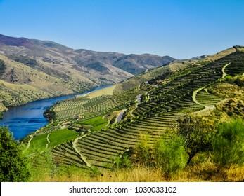 Landscape of the terraced wine fields in the Douro valley near the village of Vila Nova de Foz Coa, northern Portugal