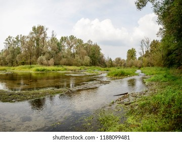 landscape with Ticino river oxbow lake clear shallow waters, shot in a bright cloudy fall day  in Ticino park near Bernate, Milan, Lombardy, Italy