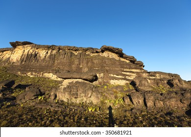 Landscape at the top of Mount Roraima in the morning with blue sky. Black volcanic stones, water and endemic plants. Gran Sabana. Venezuela 2015.
