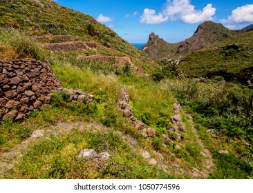 Landscape of the trail from Cruz de Taganana to Taganana, Anaga Rural Park, Tenerife Island, Canary Islands, Spain