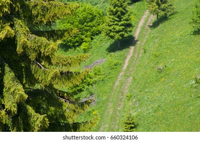 landscape of transylvania