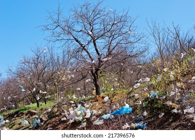 landscape with tree covered  plastic bags, garbage dump