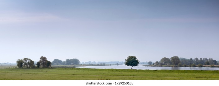 landscape with tree on bank of river Lek in holland