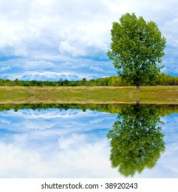 landscape with tree and water reflection